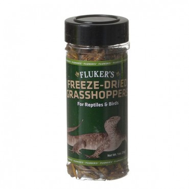 Flukers Freeze-Dried Grasshoppers - 1 oz - 2 Pieces