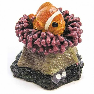 Blue Ribbon Clown fish Aqua Critter Ornament - 2.5 in. L x 2.5 in. W x 2.5 in. H - 5 Pieces