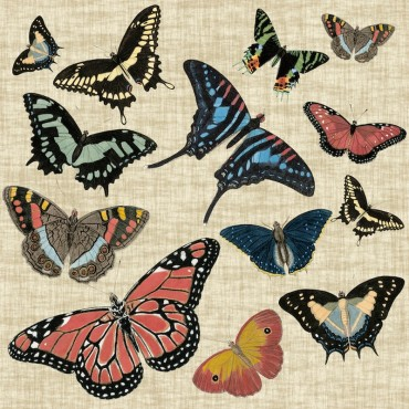 Butterflies and Linen I
