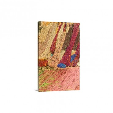 A Photomicrograph A Picture Taken Through A Microscope Of Urca Wall Art - Canvas - Gallery Wrap