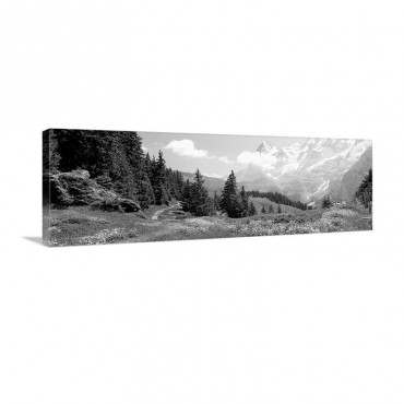 Alpine Scene Near Murren Switzerland Wall Art - Canvas - Gallery Wrap
