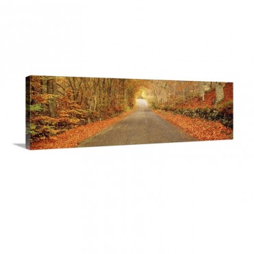 Autumn Road Scotland Wall Art - Canvas - Gallery Wrap