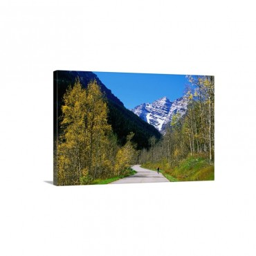 Bike Ride Aspen Colorado USA Wall Art - Canvas - Gallery Wrap