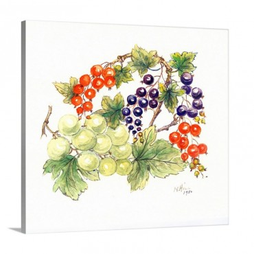 Black And Red Currants With Green Grapes 1986 Wall Art - Canvas - Gallery Wrap