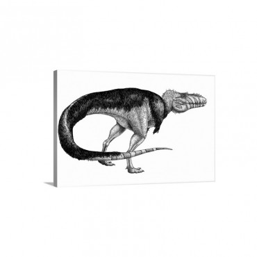 Black ink drawing Of Alioramus Remotus Wall Art - Canvas - Gallery Wrap