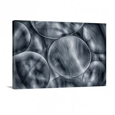 Blue Cells Wall Art - Canvas - Gallery Wrap