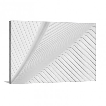 Canopy Wall Art - Canvas - Gallery Wrap
