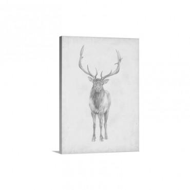 Elk Study Wall Art - Canvas - Gallery Wrap