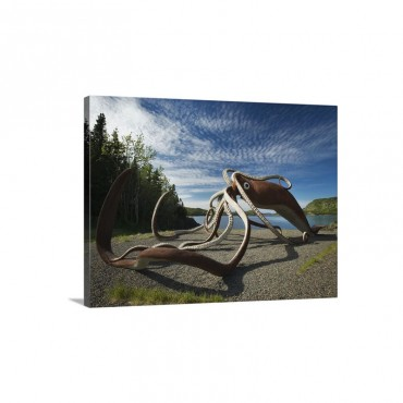 Giant Squid SculptureGlover's Harbour Newfoundland And Labrador Canada Wall Art - Canvas - Gallery Wrap