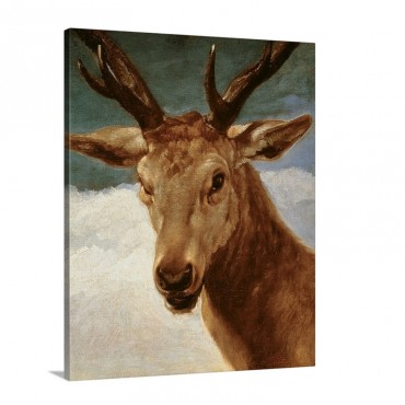 Head Of A Stag 1634 Wall Art - Canvas - Gallery Wrap