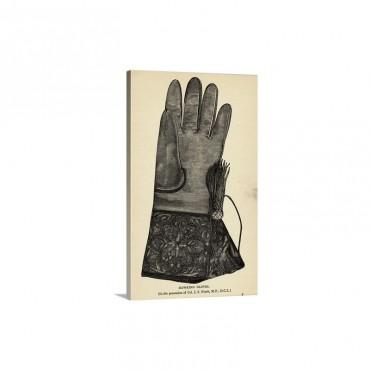 Illustration Of Hawking Glove Wall Art - Canvas - Gallery Wrap