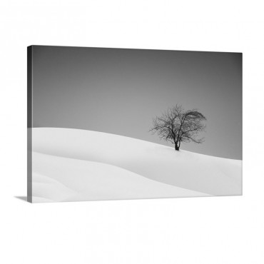 Loneliness Wall Art - Canvas - Gallery Wrap