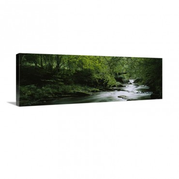 River Flowing In The Forest Aberfeldy Perthshire Scotland Wall Art - Canvas - Gallery Wrap