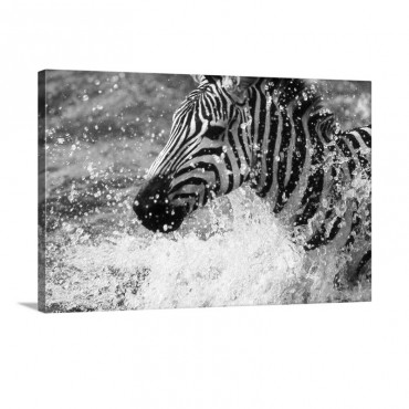 Splash Wall Art - Canvas - Gallery Wrap