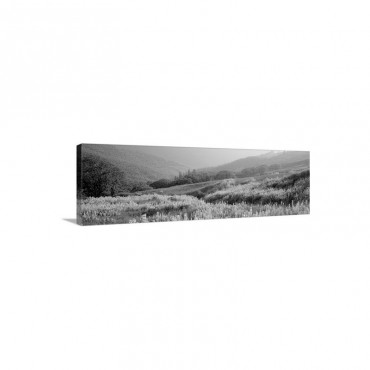 Spring Yellowstone National Park WY Wall Art - Canvas - Gallery Wrap