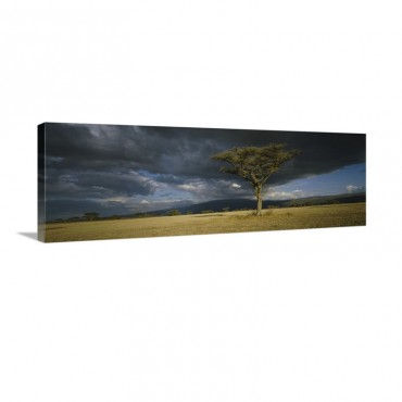 Storm Clouds Over A Landscape Tanzania Wall Art - Canvas - Gallery Wrap