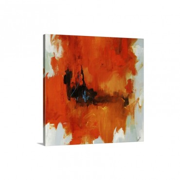 Red Tail I I I Wall Art - nvas - Gallery Wrap