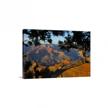 The Grand Canyon At Sunset From Mather Point On The South Rim Wall Art - Canvas - Gallery Wrap