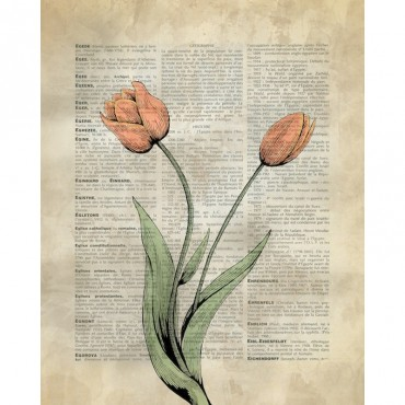 Vintage Dictionary Art Tulips