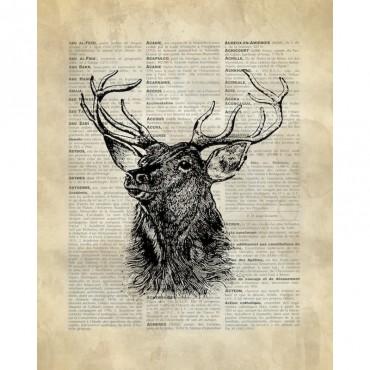 Vintage Dictionary Art Deer
