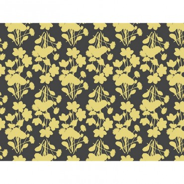 Marigolds And Daisies Flat