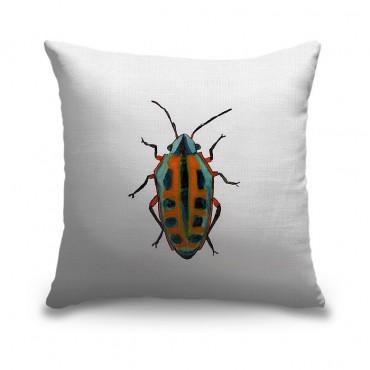 Beetle I I
