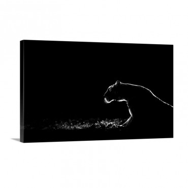 Untitled Wall Art - Canvas - Gallery Wrap