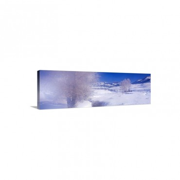 Winter Yellowstone National Park WY Wall Art - Canvas - Gallery Wrap
