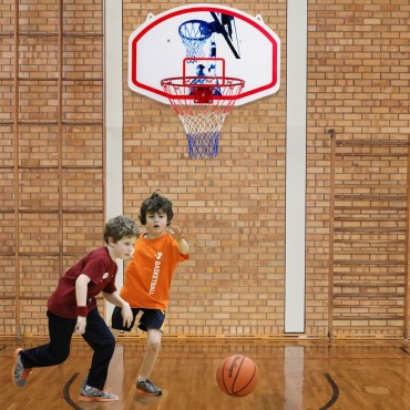 35 In. x 24 In. Wall Mounted Mini Basketball Hoop Backboard And Rim Combo