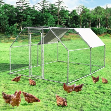 9.5 Ft x 12.5 Ft. Large Walk In Chicken Coop Run House